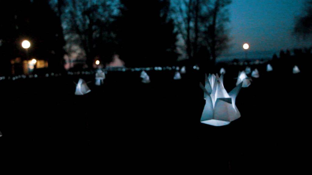Lichterspiel am Bodensee: Tausende Tulpen leuchten in Romanshorn