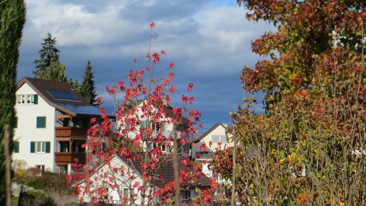 Herbst im Rüttimattquartier in Frenkendorf
