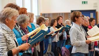 Die Sängerinnen und Sänger des Singkonvents Freiamt freuen sich auf die beiden sehr unterschiedlichen Werke von Mozart und Haydn an ihrem Bettagskonzert. zvg