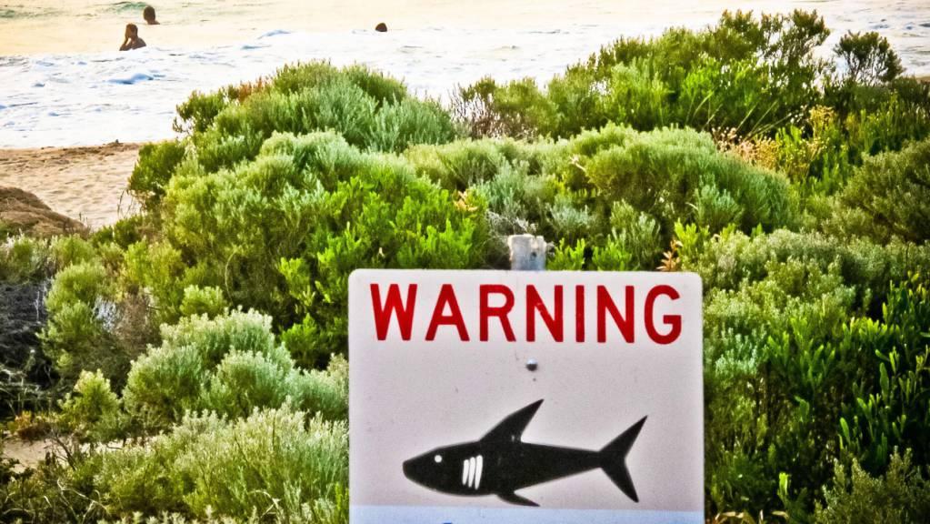 Ein Schild mit der Aufschrift «Warning shark sighting» (dt. Achtung Hai gesichtet) ist in der Nähe von Prevelly Beach aufgestellt. Foto: Rebecca Le May/AAP/dpa