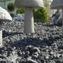 Langendorf setzt sich gegen Steingärten ein. (Archiv)