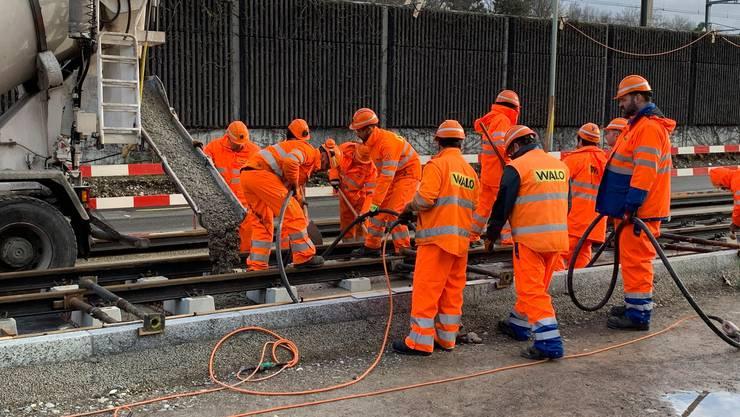 Seit heute werden in Dietikon weitere Gleise der Limmattalbahn verlegt.