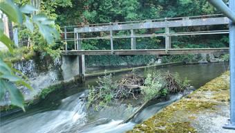 In der Suhre stehen noch Überreste des alten Wasserkraftwerks – hier soll ein neues zu stehen kommen.