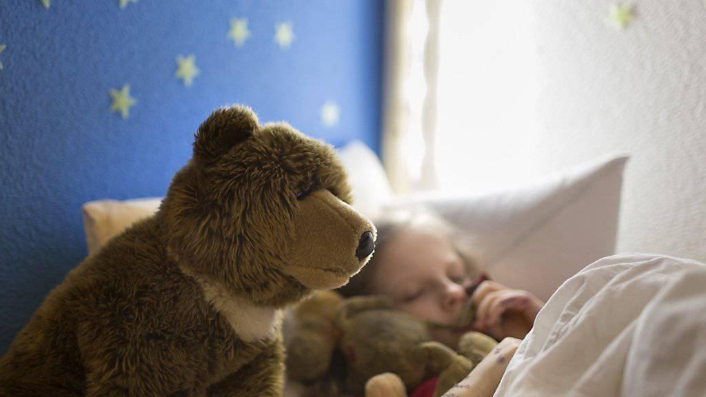 Neuen Kontrollmechanismus des REM-Schlafs entdeckt