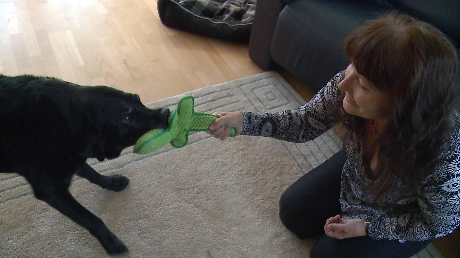 Blindenhundeführerin «Bohita» in Pension