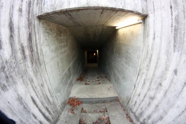 Eingang zur Gops