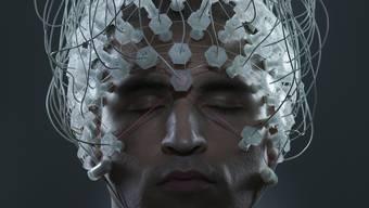 Wir haben evolutiv Kompetenzen (Apps oder «Denkwerkzeuge») erworben. Das Bewusstsein verwaltet sie.