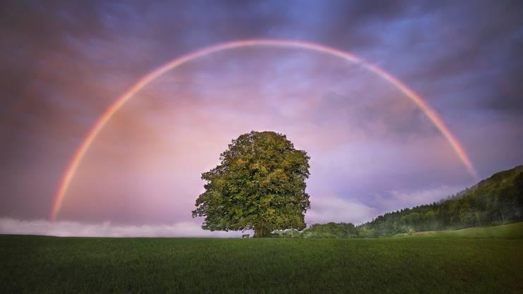 Man soll daran denken, wie schön es hier im Aargau ist – symbolisch mit einem Regenbogen-Bild über der Linner Linde von Michael Jaussi