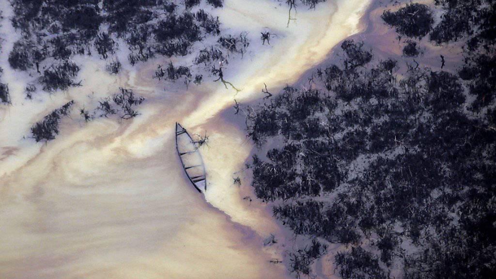 Öl auf der Wasseroberfläche im Niger-Delta - das Bild wurde 2011 aufgenommen.