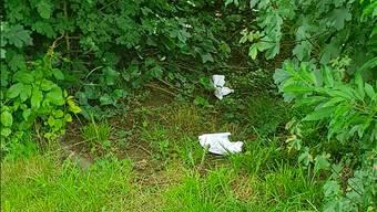 Hier hinterliess der Missetäter einen seiner Häufchen – das Papier liess er liegen.