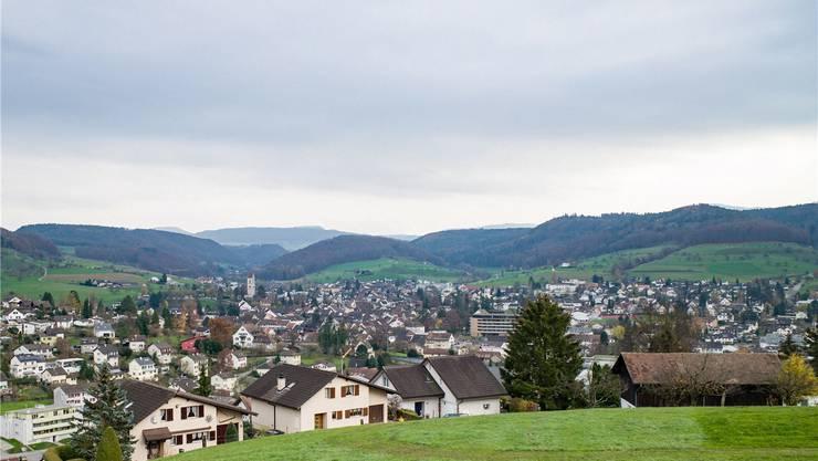 Blick auf Gelterkinden mit der reformierten Kirche und dem neuen Altersheim (Bildmitte).