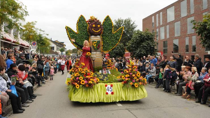 Der Winzerumzug vom letzten Jahr: Solche Bilder werden dieses Jahr in Döttingen nicht zu sehen sein.
