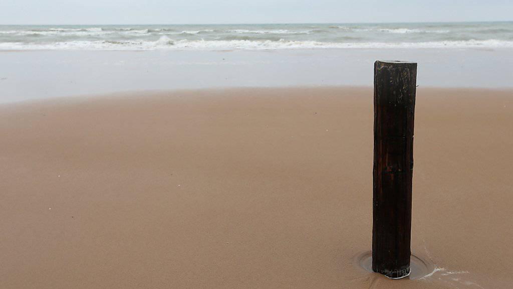 Auf jedem Sandkorn im Meer leben bis zu 100'000 Bakterien. (Symbolbild)