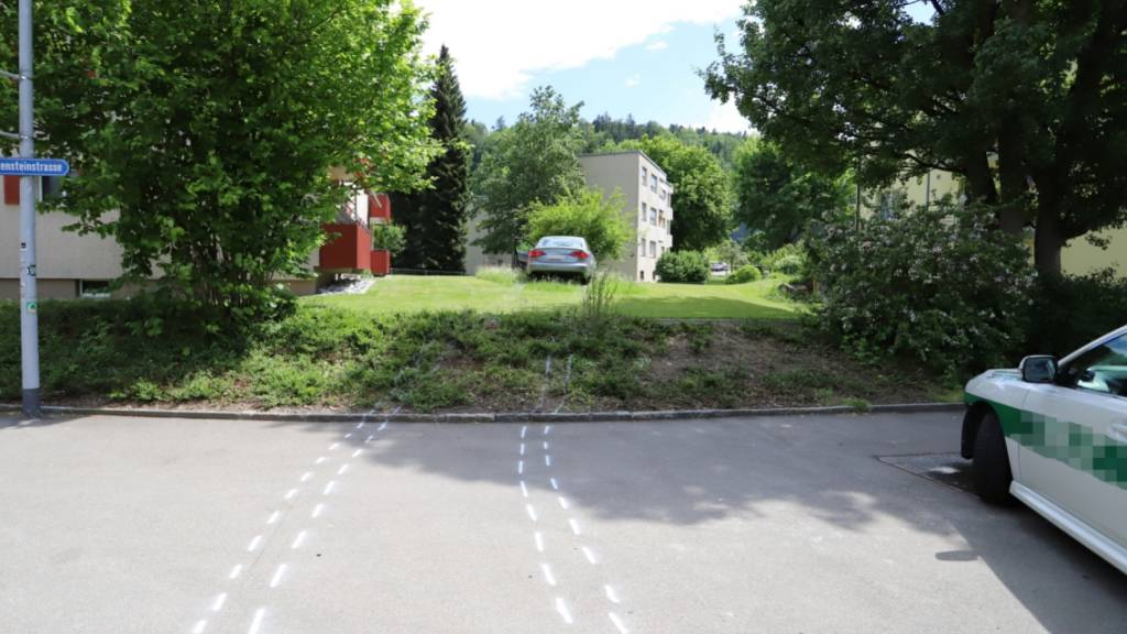 Auto landet nach Unfall in Garten