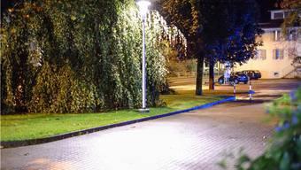 Die Menziker bewilligen die Umrüstung der Strassenbeleuchtung auf LED-Technologie