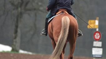 Ein 61-jähriger Mann stürzt vom Pferd – die Schuld gibt er der Pferdebesitzerin. (Symbolbild)