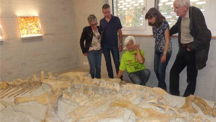 Grabungsleiter Ben Pabst (Mitte) erklärt spezielle Einzelheiten zum Plateosaurierfund. Bild: Ingrid Arndt