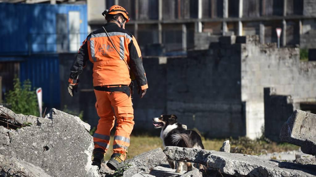 Hunde Rettungsteam beim Training