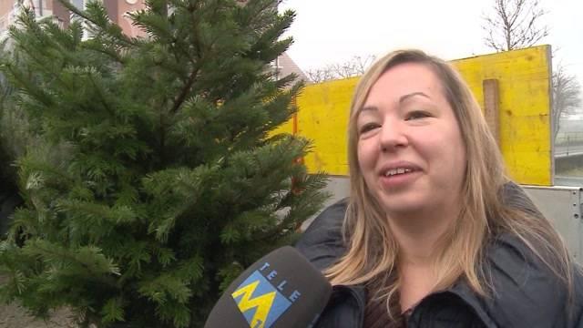Neuer Trend: Miet-Weihnachtsbaum