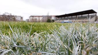 Heute entscheidet die Jury darüber, welches Projekt für einen öffentlichen Grünraum auf dem Landhof umgesetzt wird.