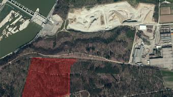 Pièce de résistance: Das rund acht Hektaren grosse Gebiet im Wäberhölzli (rot eingefärbt), das restaufgefüllt werden soll. (Archiv)