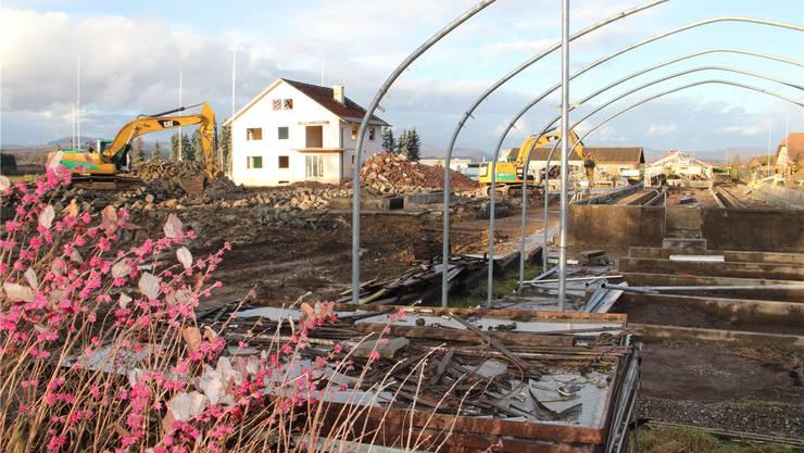 Die Abbrucharbeiten waren vergangene Woche im Gang: Hier sollen 6 Häuser mit gegen 100 Wohnungen entstehen. HHS