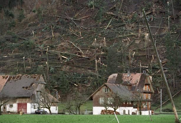 Aus Westen kommend traf der Sturm vormittags auf den Schwarzwald, die Schweiz und Liechtenstein in seiner ganzen Länge.