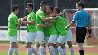 Der FC Solothurn konnte dank einer starken Rückrunde den Ligaerhalt feiern.