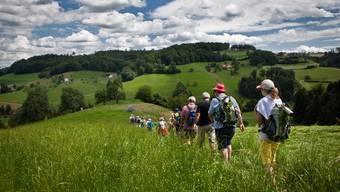 az-Leserwandern Erste Etappe: Von Zofingen nach Staffelbach