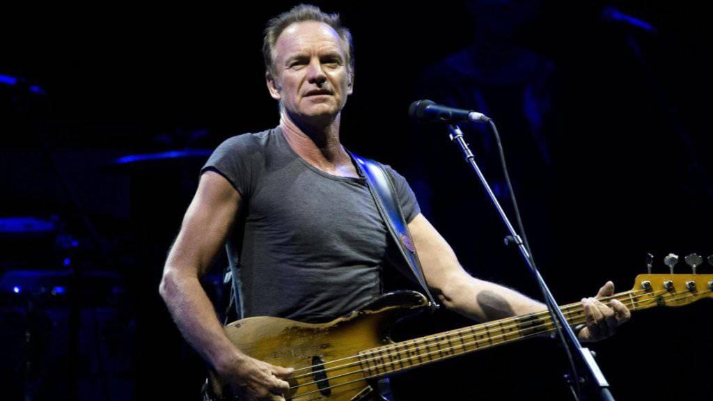 Besonders organisiert: Stings Gehirn findet Gemeinsamkeiten zwischen Songs, die dem Durchschnittshörer nicht auffallen. (Archivbild)