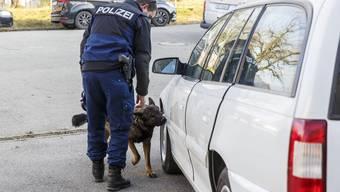 Solothurner Drogenspürhunde im Training