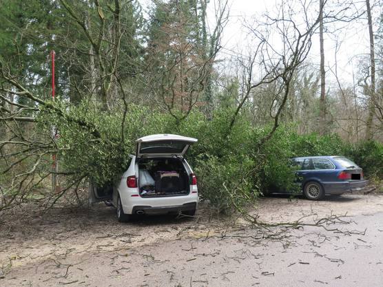 Über verletzte Personen wegen des Sturms «Ruzica» ist zur Zeit nichts bekannt.