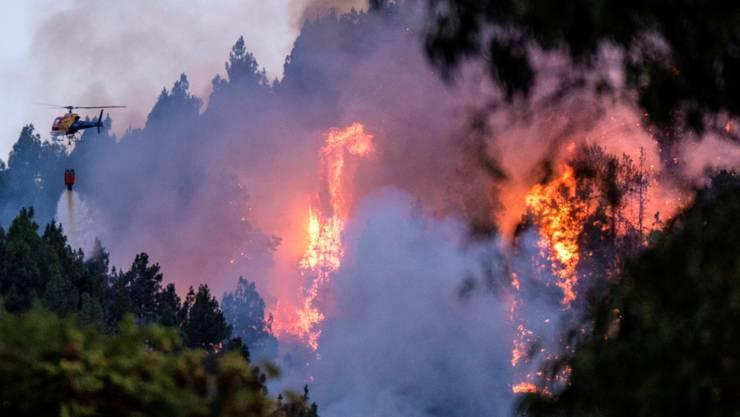Trockenheit und starke Winde: Auf der spanischen Ferieninsel Cran Canaria ist erneut ein Waldbrand ausgebrochen.