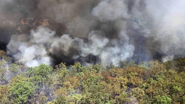 Ein Buschfeuer am Montag nahe Mudgee.
