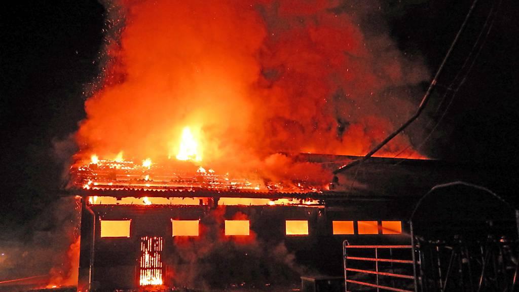 Brennender Stall in Niederwil TG - Tiere konnten gerettet werden