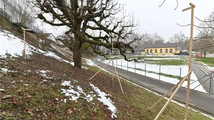 Projekt Grundwasserpumpwerk: Ausgesteckt im Februar 2019; seither ist baulich nichts mehr passiert.