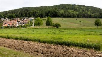 Das 2014 in Kraft getretene neue Raumplanungsgesetz im Kanton Zürich hat hohe Anforderungen: Gerade ländliche Regionen fürchten die vom Zürcher Richtplan festgelegte 80-20-Regel. Im Bild das Grenzgebiet von Geroldswil und Weiningen. (Keystone)