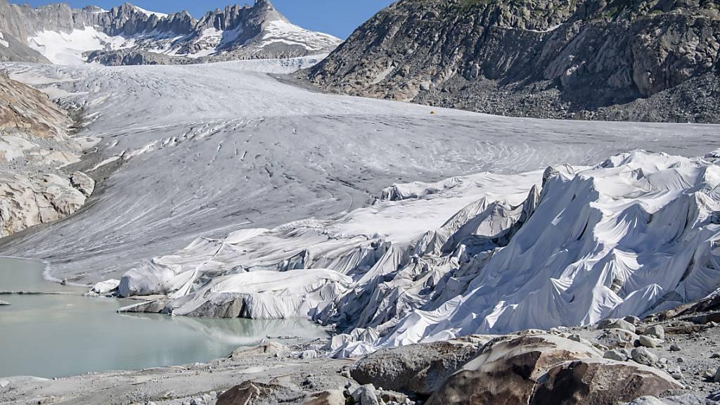 Gletscher-Viren in Alpen und Arktis bemerkenswert ähnlich