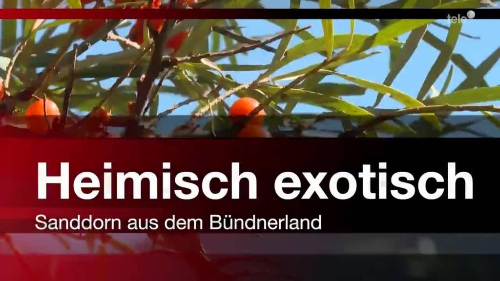 Heimisch exotisch - Sanddorn aus dem Bündnerland