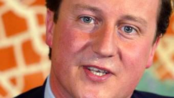 Der britische Premier David Cameron (Archiv)