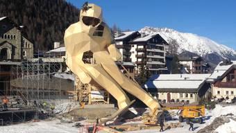 Edy Skifahrer