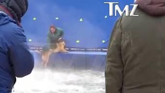 Hat er Angst oder einfach keineLust? Schäferhund «Hercules» wehrt sich mit allen vier Beinen dagegen, dass ihn ein Mann ins Wasser bugsieren will.