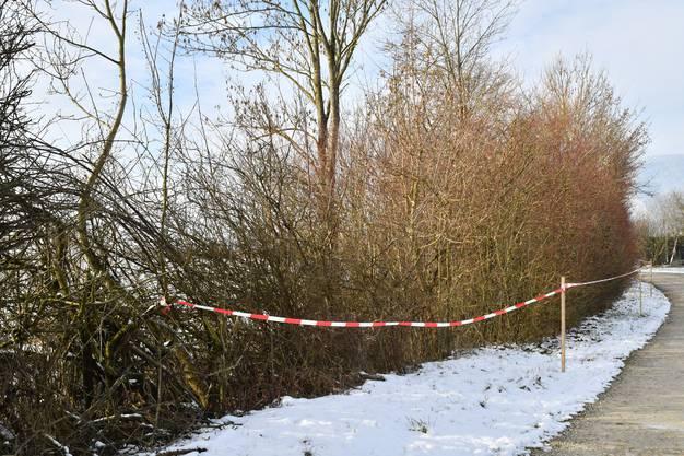 Das Gebiet wurde zur Sicherheit abgesperrt.