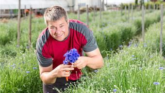 Die Pflanzen müssen bewirtschaftet werden, damit die Kornblüemli immer schön nachwachsen, sagt Fachmann Vogel.