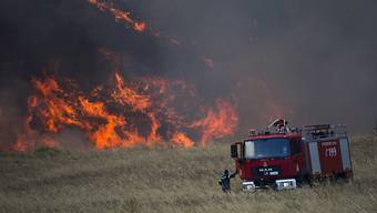 Nördlich von Athen wüten mehrere Wald- und Buschbrände. Starke Winde machen den Löschkräften die Arbeit schwer. (Archivbild)
