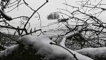 Der Winter kommt eiskalt zurück