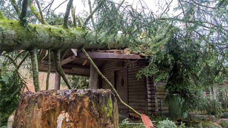 Januar 2018: Ein Baum ist auf das Waldhaus Niederlenz gefallen. FBA