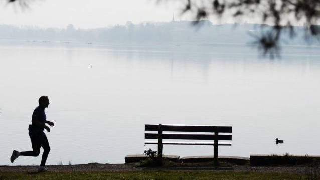 Das Projekt hat im Pfäffikersee bereits Wirkung gezeigt. Eine Ausweitung auf weitere Seen und Flüsse im Kanton Zürich würde geprüft, schreibt die Baudirektion. (Archivbild)