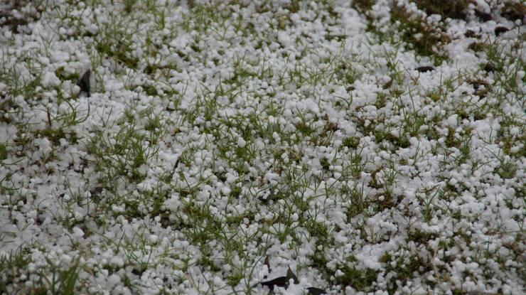 Die Eiskörner bedeckten stellenweise den ganzen Boden.