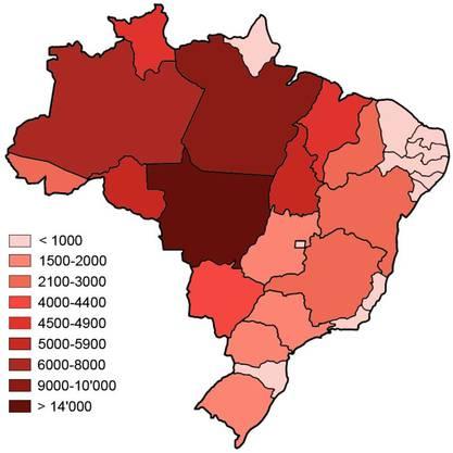 Mit Abstand am meisten Waldbrände gab es im gesamten Jahr 2019 bisher im brasilianischen Bundesstaat Mato Grosso. Stark betroffen sind auch die Bundesstaaten Pará, Amazonas, Tocantins und Rondônia.